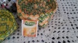 candy wrappers kurv i pickwick appelsintebrev. Har tebreven som den er lavet af i farven, stående ved siden af sig.